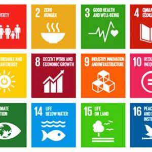 Sustainable Development (Pembangunan Berkelanjutan) Goals Tahun 2015